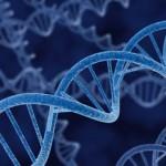 Gen Nedir? Gen Ne Demektir? Anlamı
