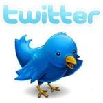 Twitter Nedir? Twitter Ne Demektir? Twitter Logosunun Anlamı