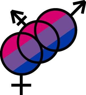 biseksuel-nedir