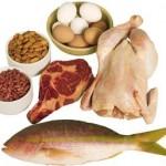 Protein Nedir? Protein Ne Demektir? Anlamı
