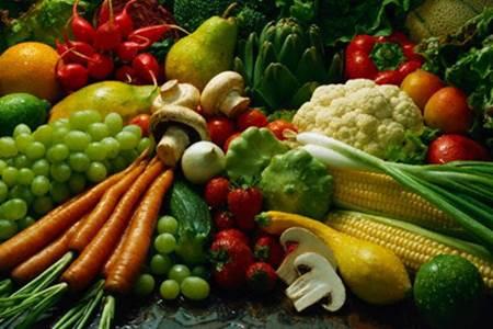marmara bölgesi tarım