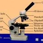 Mikroskop Nedir? Mikroskobun Yapısı, Bölümleri ve Görevleri