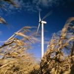 Rüzgar Nedir? Rüzgarın Nedenleri Nelerdir? Rüzgarın Çeşitleri