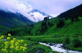 Doğa Nedir? Doğa Ne Demektir? Anlamı