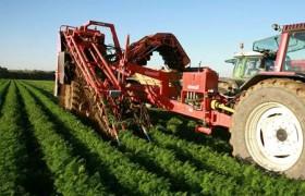 Güneydoğu Anadolu Bölgesinde Yetişen Tarım Ürünleri