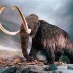 Nesli Tükenen ve Nesli Tükenmekte Olan Hayvanların İsimleri Nelerdir? Korumak İçin Neler Yapılmalı?