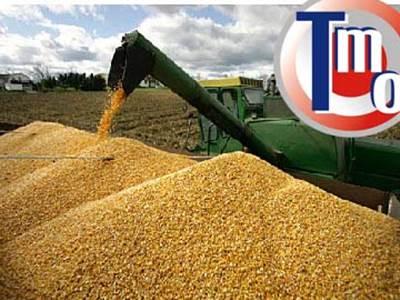 Buğdayın depolanması