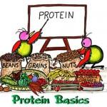 Canlıların Protein Yapıları Niçin Farklıdır?