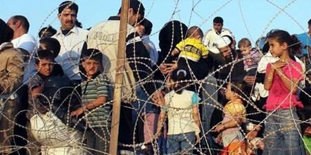 mülteci nedir