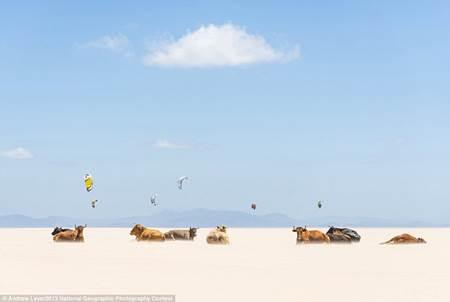 National Geographic Fotoğrafları-5