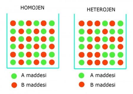 Homojen nedir