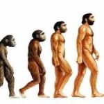 Evrim Nedir? Evrim Ne Demektir? Anlamı