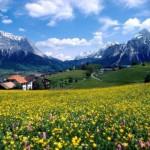 İlkbahar Nedir? İlkbahar Ne Demektir? Anlamı