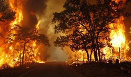 Yangından Korunma Haftası Hakkında Yazı