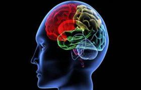 Beyni Öldüren En Tehlikeli Alışkanlıklar