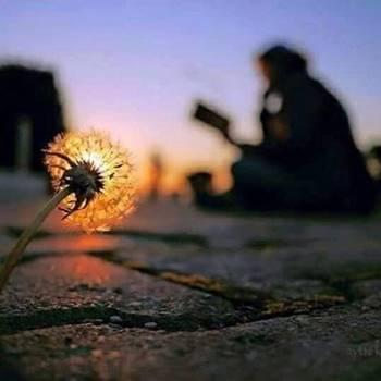Seçme Hikmetli, Kısa, Özlü Güzel Sözler – 2