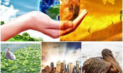 Ekosistemdeki Değişikliklerin Olası Sonuçları