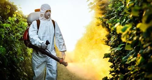 tarım ilaçlarının doğal yaşam alanlarına zararları
